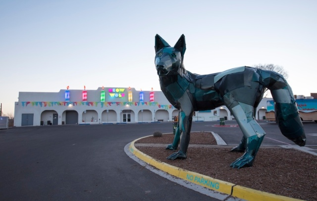 Don Kennell's dog watches over Meow Wolf in Santa Fe.